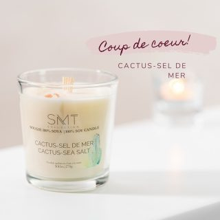 cactus-sel-de-mere
